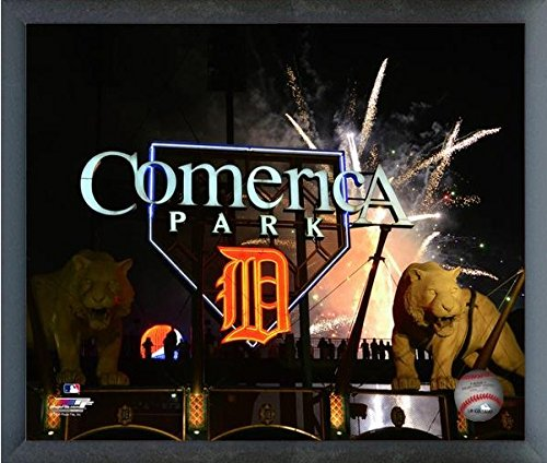 Detroit Tigers Comerica Park MLB Stadium Photo (Size: 17