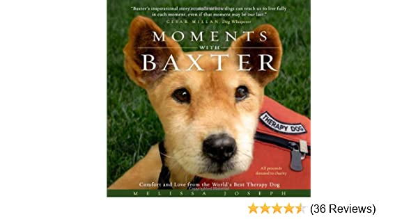 moments with baxter comfort and love from the worlds best therapy dog melissa joseph 9780981881300 amazoncom books - Helena Furst Lebenslauf