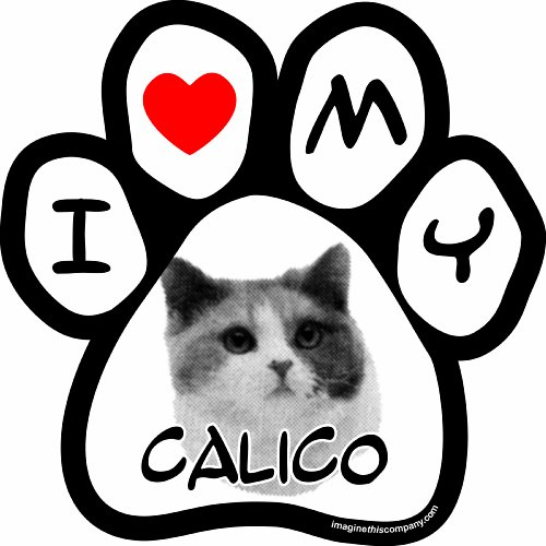 (Imagine This I Love My Calico Image Paw Car Magnet, 5-1/2-Inch by 5-1/2-Inch)