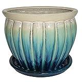 Garden Treasures 6.22-in x 5.71-in Teal cream Ceramic Planter