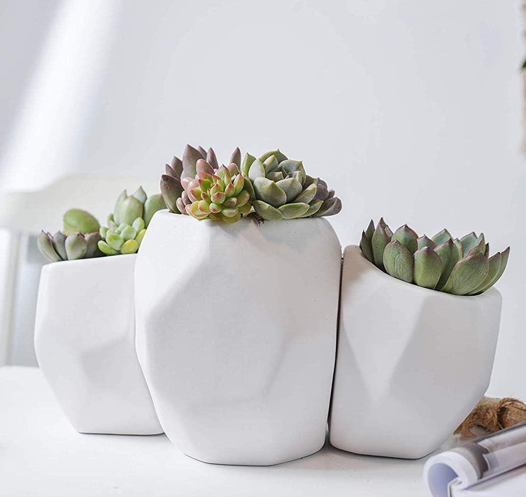 Cute Ceramic Animal Set Succulent Planter Pots Christmas Home Decor Gift Cat Cow Elephant Fox Owl