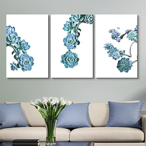 3 Panel Blue Succulent Plants on White Background x 3 Panels