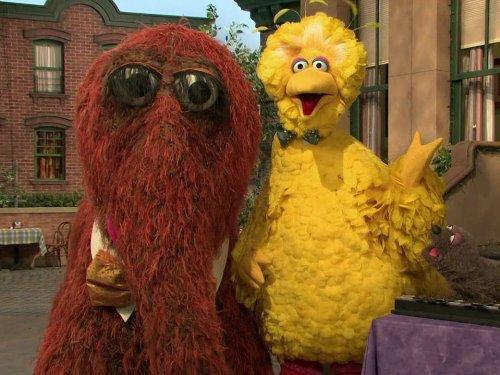Big Bird And Snuffy Talent Show