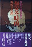 img - for Biron winter drizzle - instigator, Fujieda Biron (1990) ISBN: 4062050153 [Japanese Import] book / textbook / text book