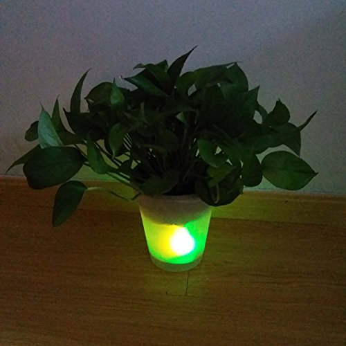 Solar Lighted Outdoor Planters - 1