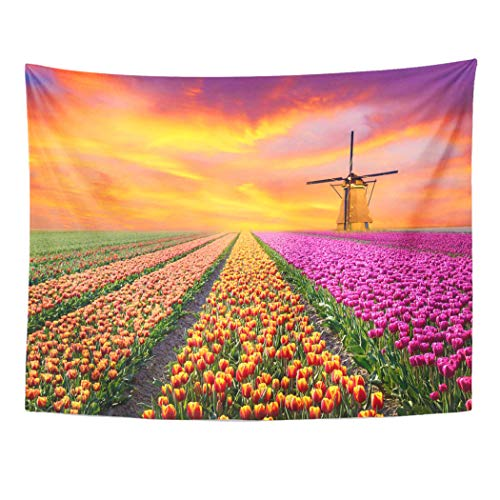 Semtomn Tapestry Wall Hanging Magical Landscape Sunrise Over Tulip Field in The Netherlands 60