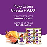 Halo Grain Free Natural Wet Cat Food, Salmon