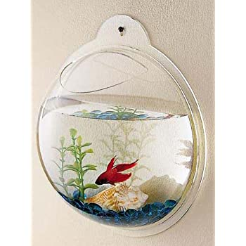 Amazon Com Fish Bubble Wall Mount Fish Bowl Half