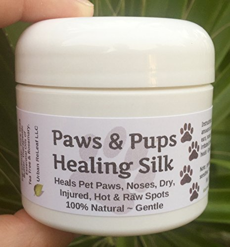 PAWS & PUPS HEALING SILK! Heal & Protect Pet Paws, Dry, Injured, Hot & Raw Spots. Gentle 100% NATURAL Balm 2 oz Cream Lotion SALVE! Vegan, Vitamin rich. Earth's finest ingredients. Organic Shea Butter, Coconut & Olive Oil, Soy Wax, Botanicals. Softens crusted skin. HEALS! Mushing, Walks, Rescues, Best Friends! (Salt Pups)