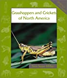 Grasshoppers and Crickets of North America, Sara Swan Miller, 0531121704