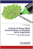 A Study of Heavy Metal Contamination in Roadside Soil and Vegetables, Shashank Sharma and F. M. Prasad, 3659120049