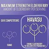 Havasu Nutrition Elderberry and Probiotics 10