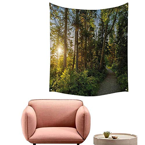 alsohome Tapestry Blanket Hanging Tapestry for Bedroom Park in Cape Breton Highlands Canada Forest Path Trees Tranquility Photo Blue Green 70
