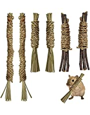 6 Pack Hamster Chew Toys, Include Apple Wood Sticks and Two Sizes Seagrass Twists, Natural Molar Toy for Small Animals, Snack Kit for Guinea Pig Bunny Rodent Pets Chinchilla