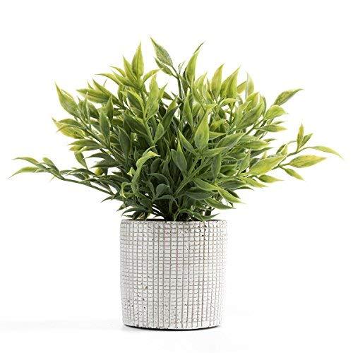 Cyrra Small Size Bathroom Living Room Laundry Room Guest Room Shop Table Shelf Decor Ideas Indoor Green Artificial Grass Shrub Plants 8 (High) x 4 (Pot Diameter Inch (Nandina S)