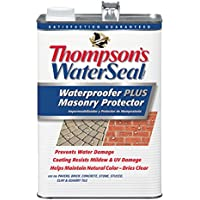 Thompson's Waterseal 1-Gallon Waterproofer Plus Masonry Protector