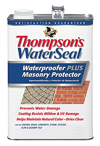 Thompson's TH.023101-16 Waterseal Waterproofer Plus Masonry Protector, 1 gallon
