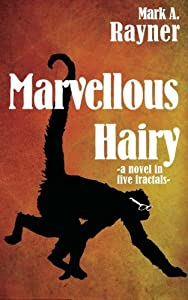 Marvellous Hairy: -a novel in five fractals-