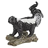 Design Toscano Stinky the Striped Skunk Statue Review