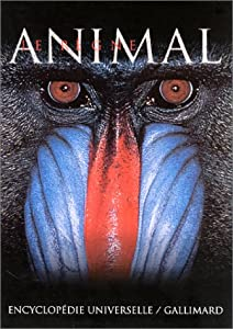"Afficher ""Le règne animal"""