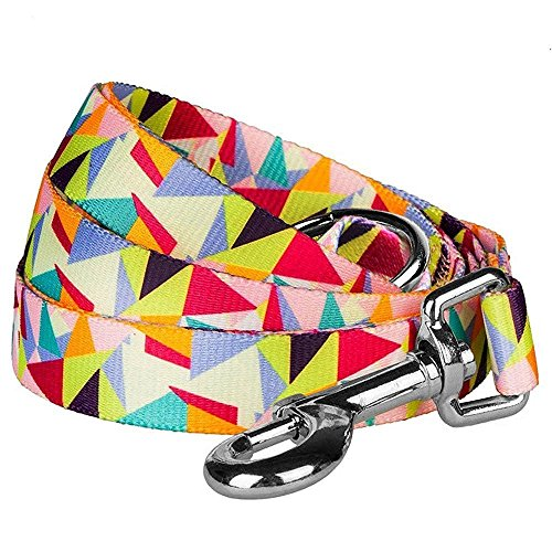 """Blueberry Pet Durable Adorable Triangles in Colorful Spring Pastels Dog Leash 5 ft x 5/8"""", Small, Leashes for Dogs"""