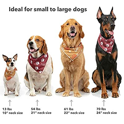Odi Style Valentine's Day Dog Bandana - 2 Pack Hearth and Paw Printed Dog Bandanas, Valentine Dog Costume Bandanas for Small, Medium, Large Dogs, Holiday Pet Puppy Dog Accessories Scarf, Red, Gold