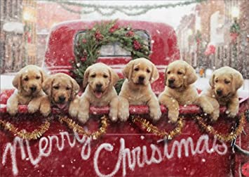 Christmas Puppies.Lab Puppies In Red Truck Avanti Dog Christmas Card