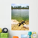 Wallmonkeys Florida Everglades American Alligator Wall Mural Peel and Stick Graphic (48 in H x 32 in W) WM360627