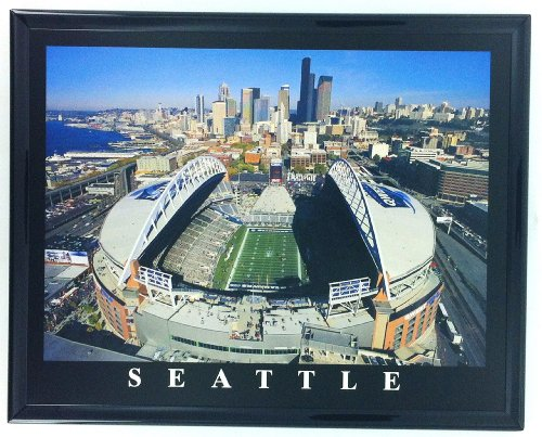 frame-football-seattle-seahawk-aerial-stadium-photo-qwest-field-f7576a