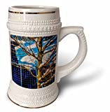 3dRose Alexis Photography - Objects - Young oak tree and a snow covered solar power panel in winter park - 22oz Stein Mug (stn_280888_1)