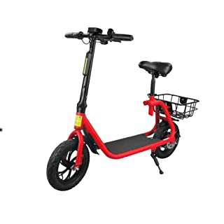 Electric Bicycle 360W with Seat Scooter Adult Folding Outdoor Travel Electric Car (10Ah Battery)