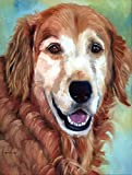 Cheap Caroline's Treasures 7383CHF Golden Retriever Good Boy Flag Canvas House, Large, Multicolor