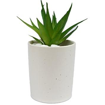 outflower 6 cm Keramik sucuulent Blumentopf Cactus Pflanztopf ...