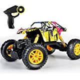 DOUBLE E RC Car 2.4GHz 1/18 Radio Vehicle Graffiti Buggy Monster Truck