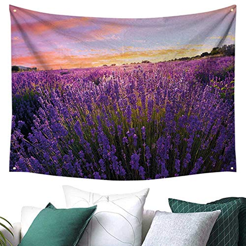 WilliamsDecor Lavender Tapestry for Living Room Rural Meadow in Full Blossom Summertime Lively Nature European Land Festival Flags 72W x 54L Inch Violet Coral Light Blue]()