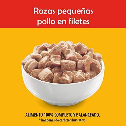 PEDIGREE alimento húmedo para Perros Adultos de Razas Pequeñas. Sabor: Pollo en Filetes. Contiene 10 Sobres 4
