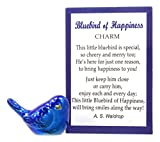 Bluebird of Happiness Pocket Token