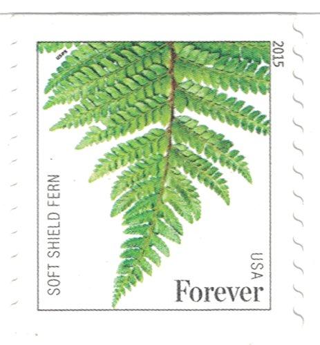 Usps Ferns Forever Stamps 20 Stamps Buy Online In Uae