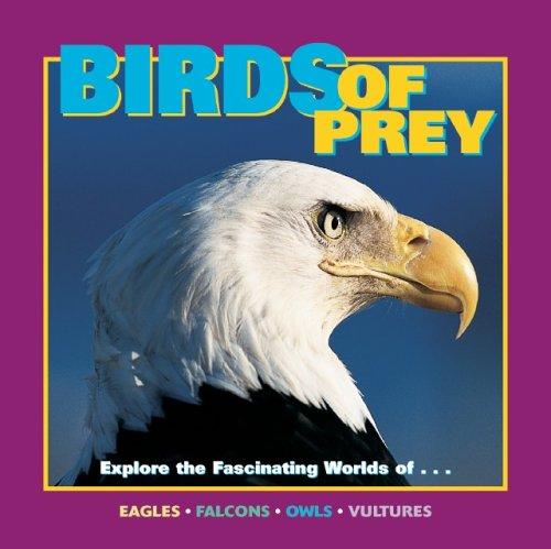 Download Birds of Prey (Our Wild World) pdf