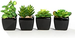 Nattol Modern Mini Artificial Succulent Plants Potted in Cube-Shape White Ceramic Pots for Home Decor, Set of 4 (Black)
