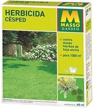 Herbicida Césped Masso 60 ml: Amazon.es: Jardín