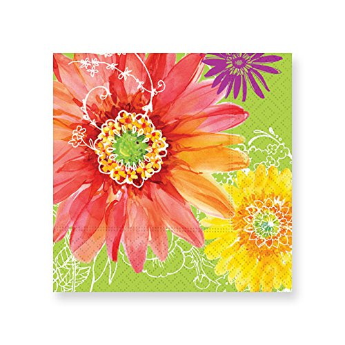 Design Design 624-06869 Graphic Daisy Beverage Napkins, Multicolor