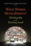 img - for What Works in Development?: Thinking Big and Thinking Small book / textbook / text book