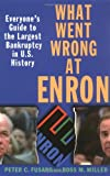 Image of What Went Wrong at Enron: Everyone's Guide to the Largest Bankruptcy in U.S. History