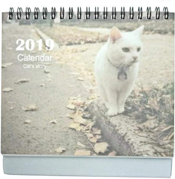 Eternitry 2019 Calendario de Escritorio Lindo Gato Mesa Impresa Memo Programa Planificador Calendarios Pasar página Decoración de Oficina en casa Gráfico de Pared Tamaño Grande o pequeño: Amazon.es: Hogar