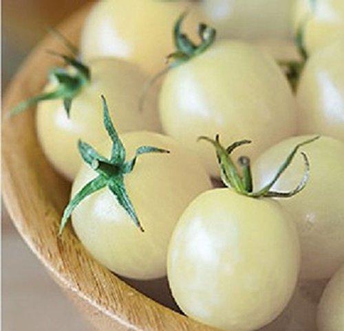 snow white tomato seeds - 5