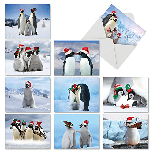 (Penguins and Greetings: 20 Assorted Seasons Greetings Note Cards Depicting Holiday Penguins in Their Natural Surroundings, with Envelopes. AM2951SGG-B2x10)