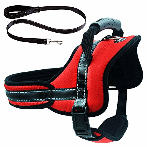 Mihachi Dog Harness with Leash with Handle No Pull No Chock Adjustable Padded Vest Harness for Dogs, Red,L