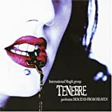 Descend From Heaven by Tenebre (2006-03-31)