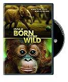 IMAX: Born to Be Wild Image